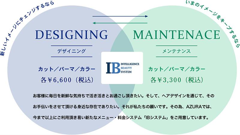 IB System